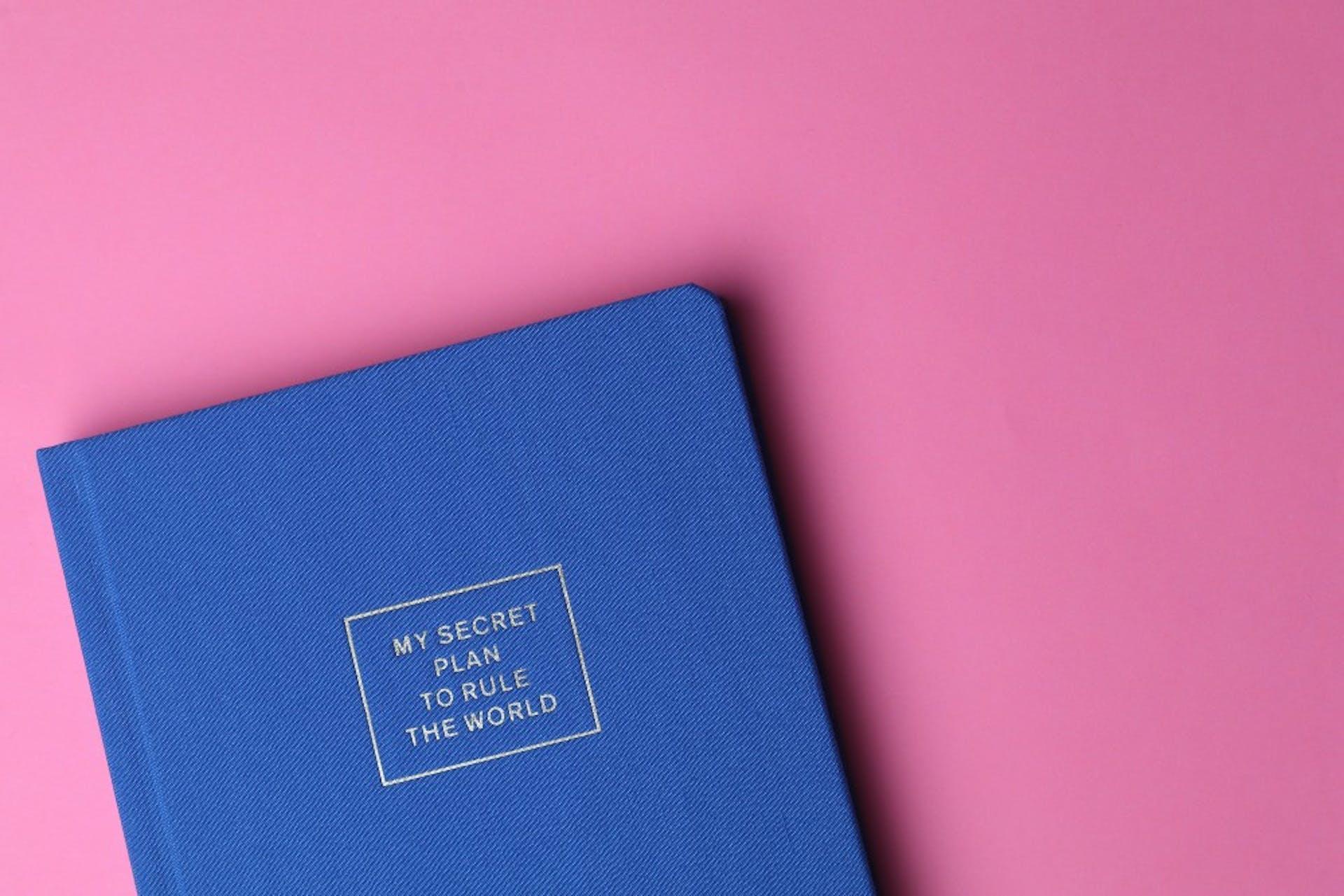 Business Plan: lo que les faltaba a Pinky y Cerebro, con ejemplos