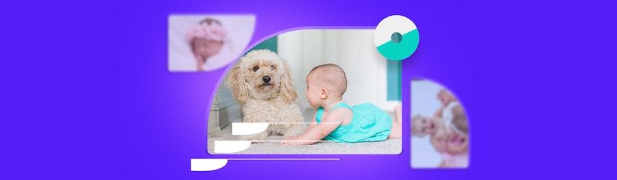 ¿Cómo hacer una sesión de fotos para bebés en casa? Los mejores 15 tips que recibirás