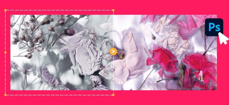 Photoshop LUTs: el secreto para ajustar el color de tus fotos + Acciones gratis