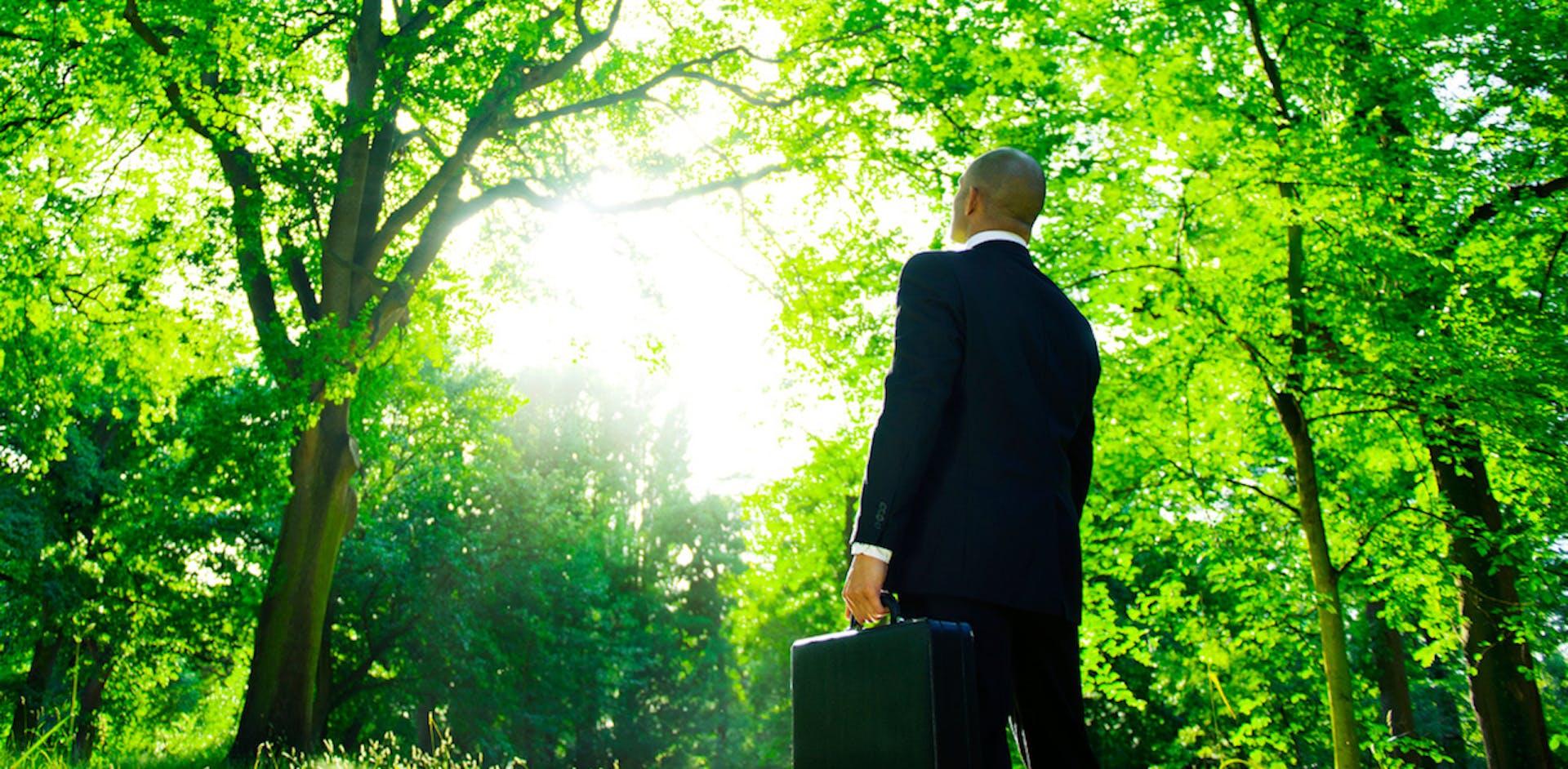 ¿Conoces qué es el green marketing? La estrategia de los negocios sostenibles y ecológicos