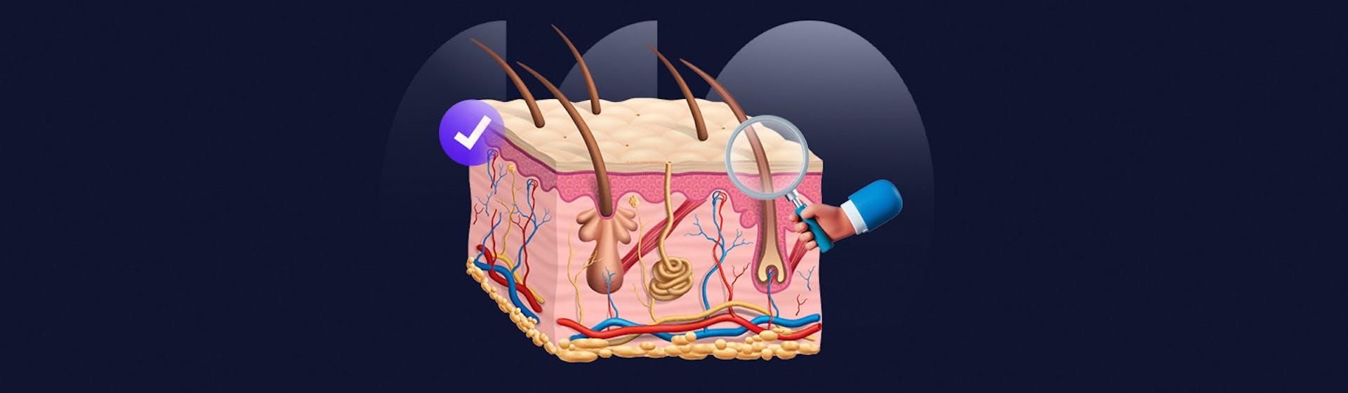 Lesiones elementales de la piel: ¡conoce todo acerca de ellas!