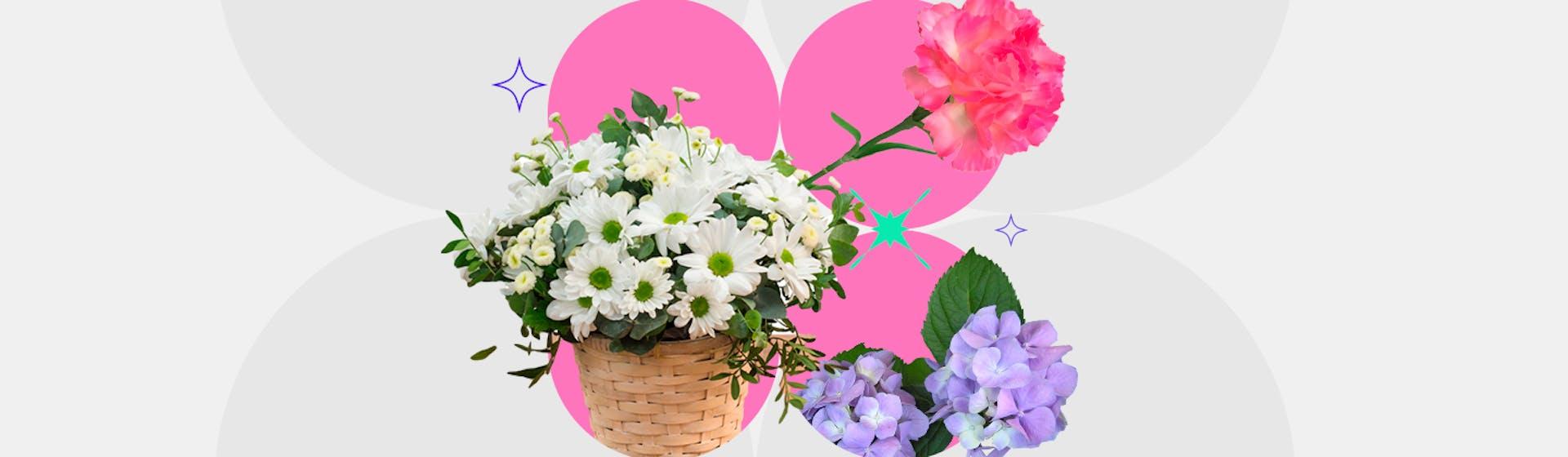10 flores de jardín para decorar y darle color a tus áreas verdes
