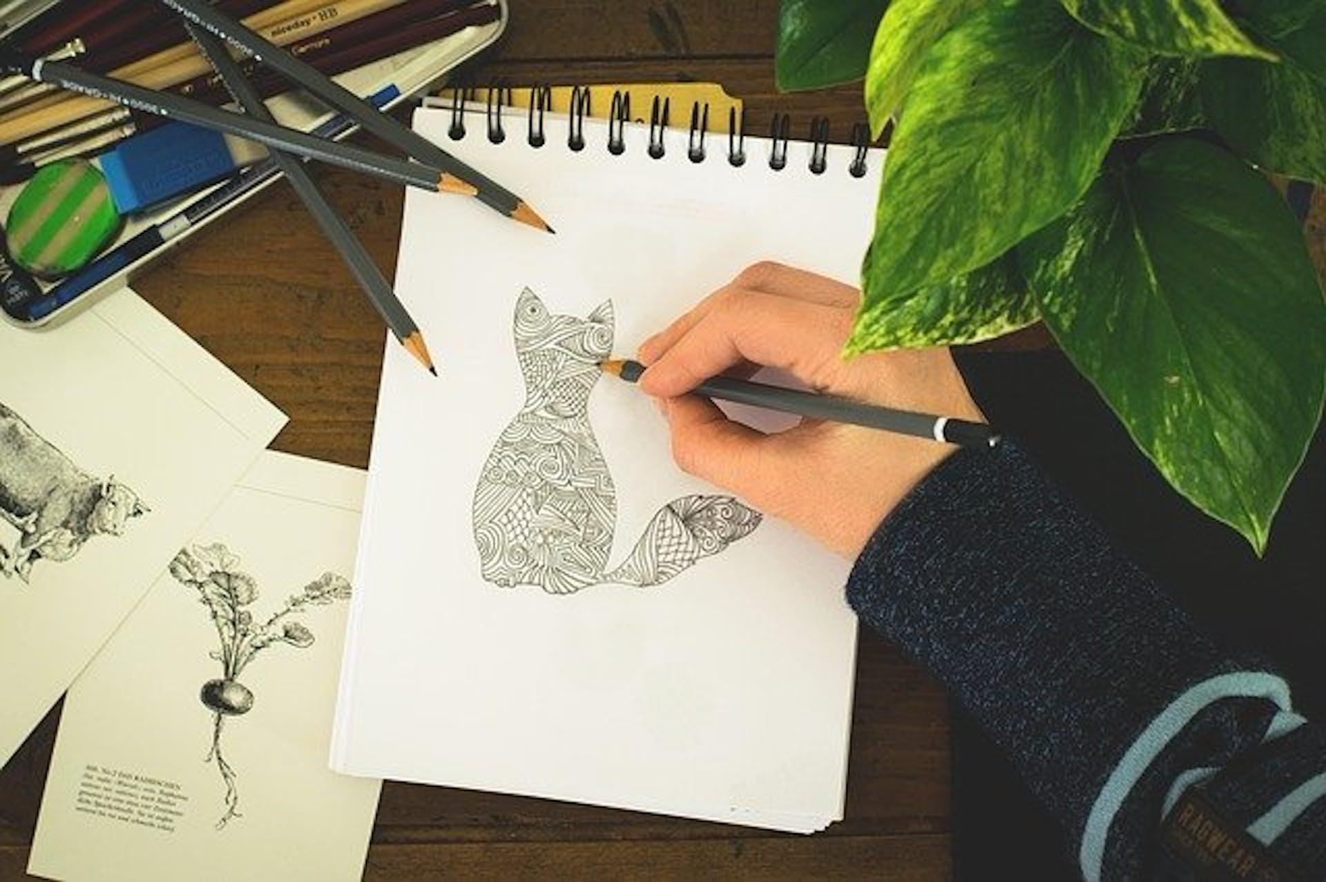 Pasar un dibujo a digital ¡Cambia del lápiz al vector!