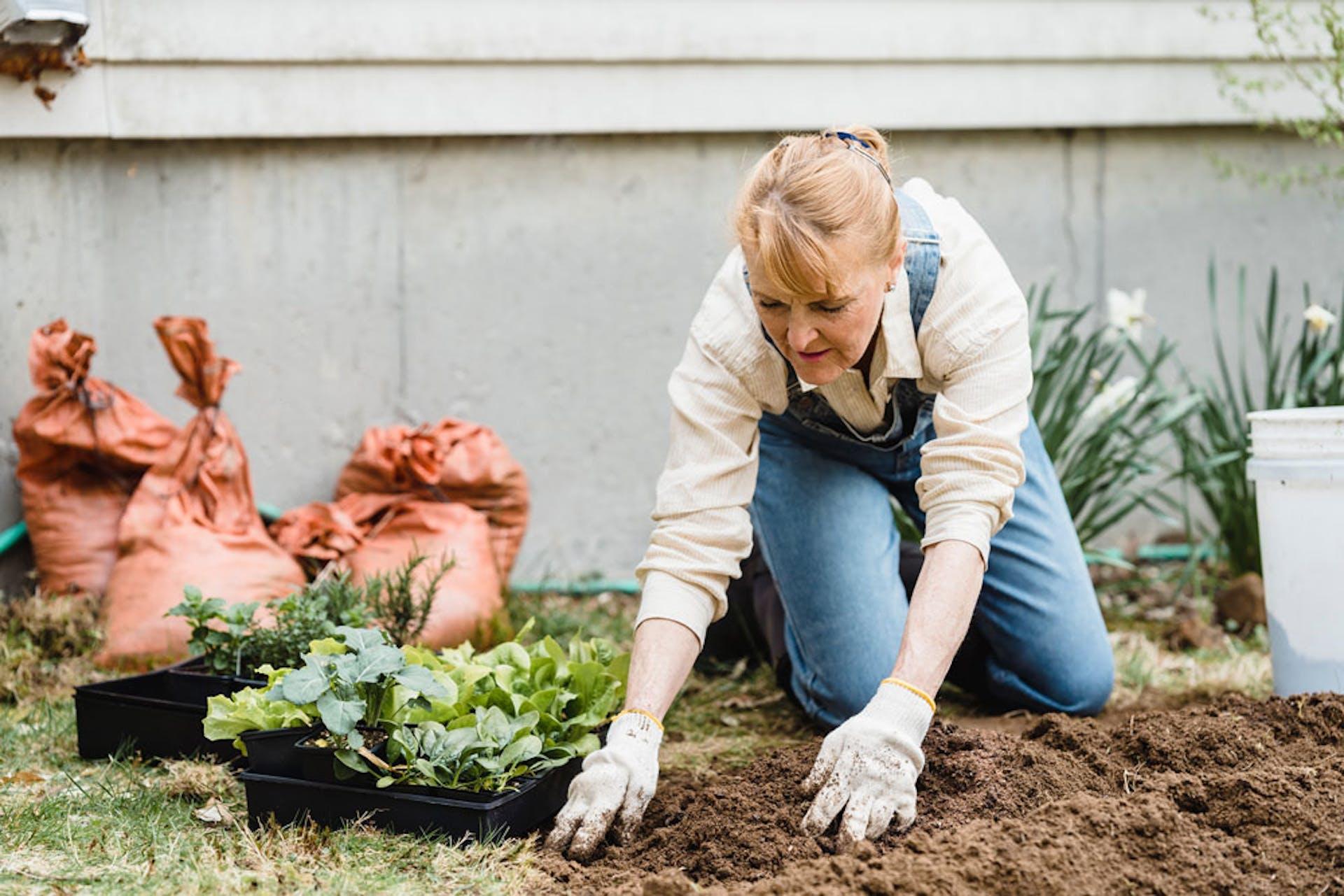 Tipos de suelos: ¿cómo saber cuál es el de mi jardín?