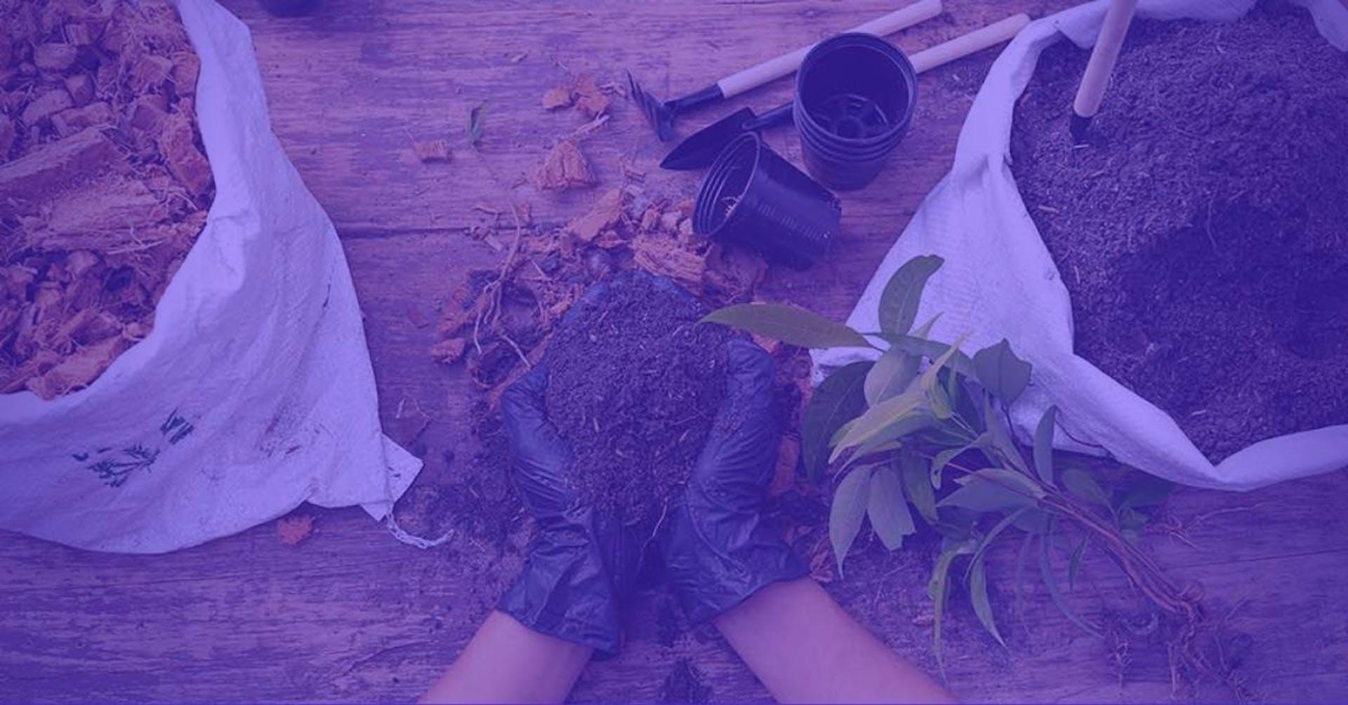 ¿Cómo preparar tierra para plantas? 5 tips para un suelo más fértil y plantas más sanas