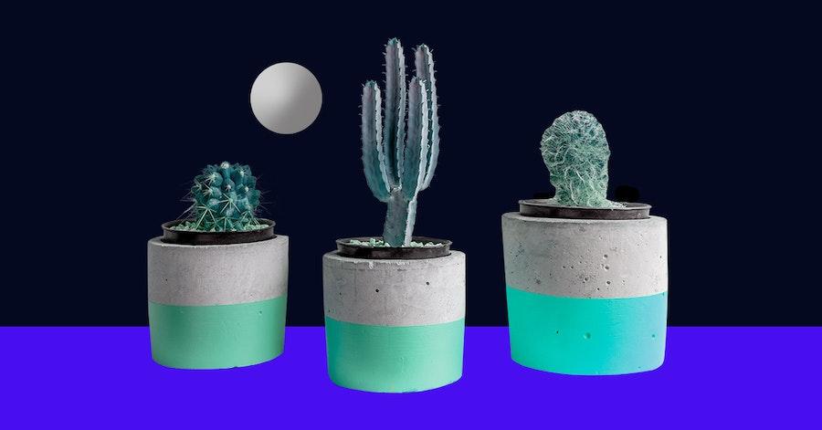 Macetas de cemento: ¡Decora tu hogar con tus plantas favoritas!