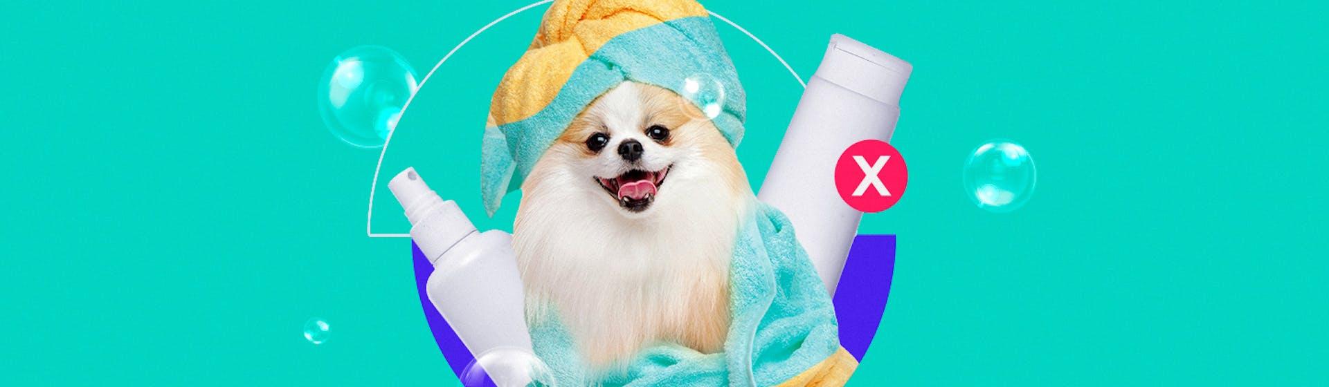 Conoce estas 7 marcas de shampoo vegano que no testean en animales