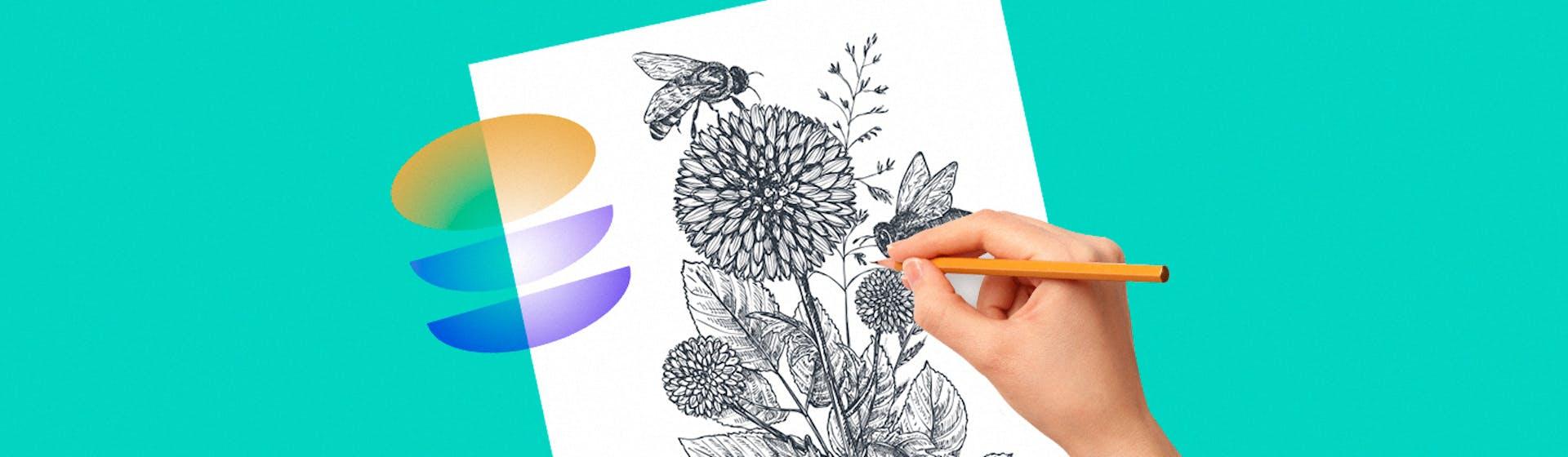 ¿Cómo aprender a dibujar a lápiz? 10 pasos para comenzar a dibujar
